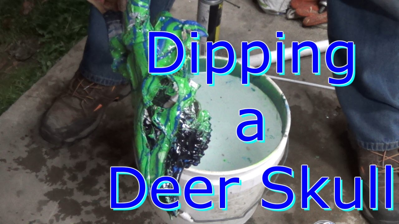 hydro dipping deer skull with spray paint youtube. Black Bedroom Furniture Sets. Home Design Ideas