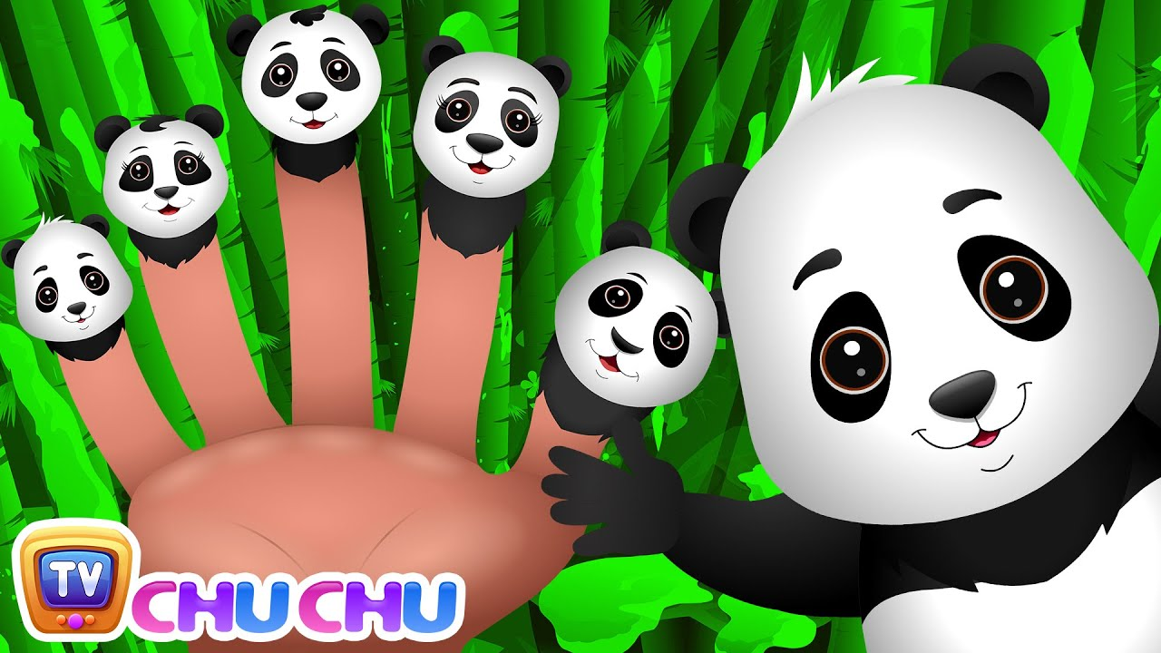 Finger Family Panda | ChuChu TV Animal Finger Family Songs & Nursery Rhymes For Children