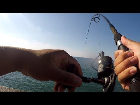 Exploring & Fishing Jennette's Pier (Nags Head, NC)