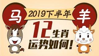 2019【生肖马羊】下半年运势