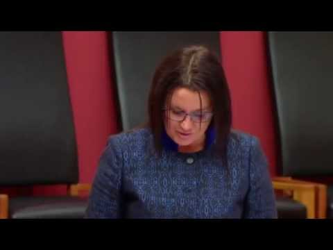 Jacqui Lambie reveals 21 year old son is 'out of control' ice addict   9news com au
