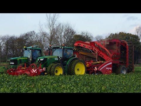 Sugar beet harvest Grimme Rootster 604 en Grimme FM300 frontklapper Trekkerweb