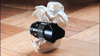 Is the Fuji 18-55mm the KING of KIT lenses? Photo Tests + Video Comparison!