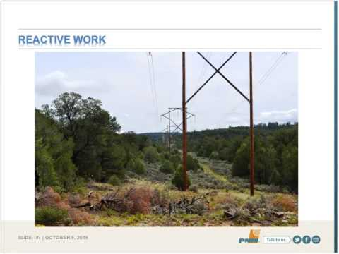 Chairman's Initiative Webinar: Managing Electricity Reliability Risks on Forests and Rangeland