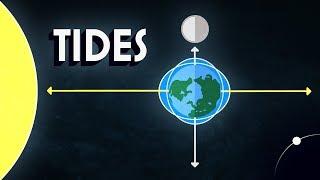 Neil deGrasse Tyson Explains the Tides