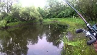 Курьезный случай на рыбалке, или +1 к списку пойманного кастингом ПРИКОЛ НА РЫБАЛКЕ