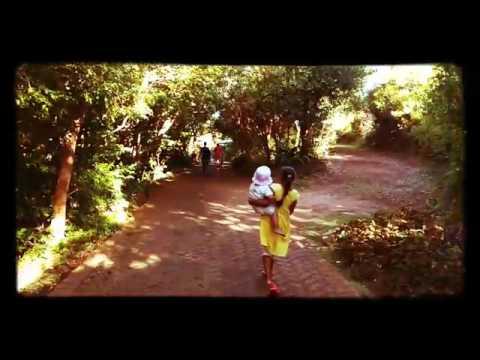 Kirstenbosch gardens cape town - fun times