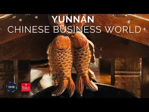 Discovering Yunnan Cultural & Business World Region