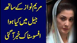 vuclip Maryam Nawaz ke Saath Qaid Mai Kya Huwa