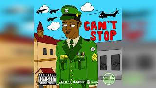 Salmanovic - Can't Stop (Prod. By Damien Alter)