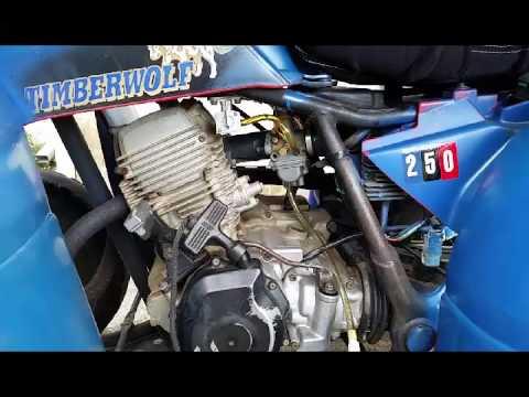 Yamaha Timberwolf 250 ATV  YouTube