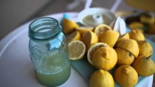 How To Make Fresh Lemon Sorbet  Lemon Sorbet Recipe