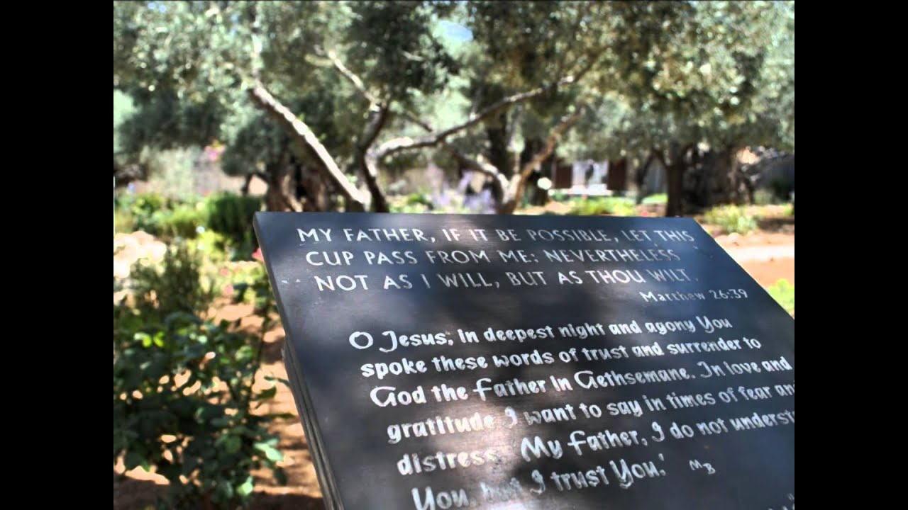 whispers-of-my-father-neath-the-old-olive-tree-the-cox-family-with-lyrics-whispersofmyfather