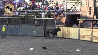 ¡¡ IMPARABLES LOS TOROS BARBAROS!! Rancho La Mision En El Sabino Guanjuato 2 Enero 2014
