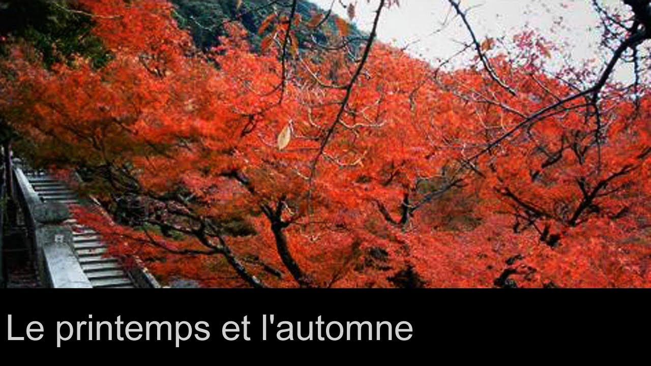 des paysages japonais le printemps et l 39 automne youtube. Black Bedroom Furniture Sets. Home Design Ideas