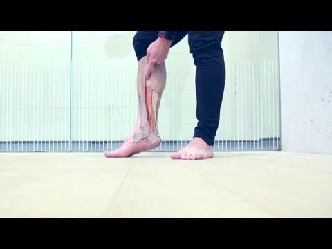 best-exercise-for-shin-splints-or-flat-feet