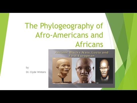 Genetic History of Black People