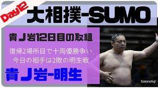 8勝3敗(貴乃花 Takanohana)-9勝2敗(立浪 Tatsunami) 貴ノ岩(28)[モンゴ...