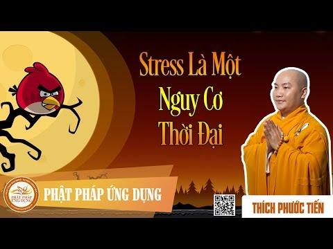 Stress Là Một Nguy Cơ Thời Đại  - Thầy Thích Phước Tiến Thuyết Pháp