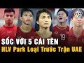 Bóng đá Hôm Nay 11/11:Việt Nam UAE Thái Lan...HLV Park Loại 5 Cầu Thủ I Nhịp Đập Bóng Đá