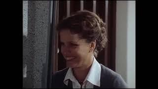 Der Führerschein (TV-Film, BRD 1978)