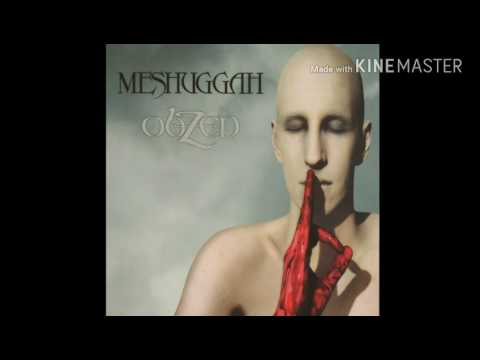 Meshuggah  Electric Red