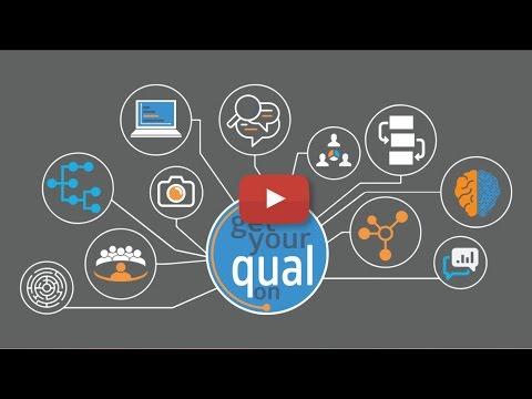 Why Go Qualitative?