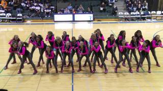 new trier dance team 2014 01 24