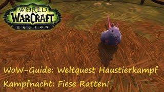 WoW-Guide: Weltquest Haustierkampf - Kampfnacht: Fiese Ratten! - Splint Jr.