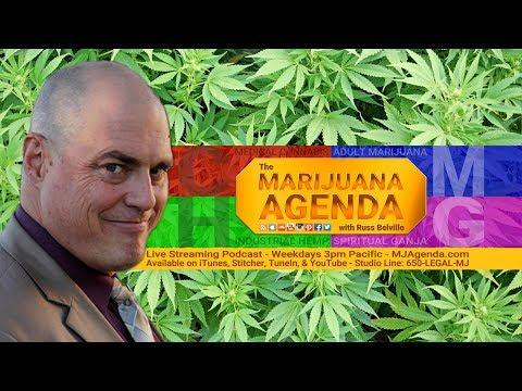 Marijuana Wins Big in the 2017 Election