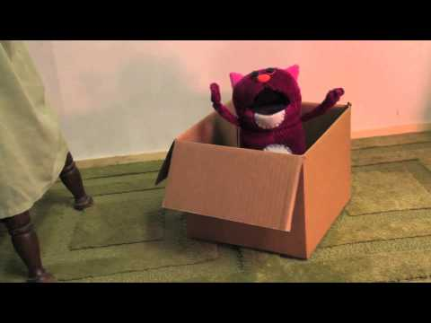 Corduroy Cat- Cat in a Box (Song)