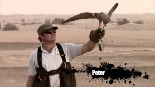 Royal Shaheen Events, Falconry show Dubai