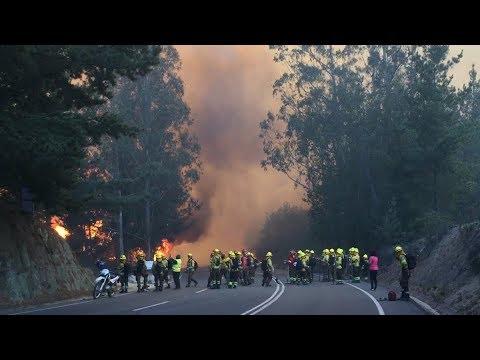 Incendios En Valparaíso: ¿Cómo Investigan La Intencionalidad?