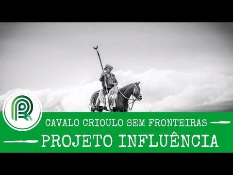 Programa Cavalo Crioulo Sem Fronteiras - Projeto Influência