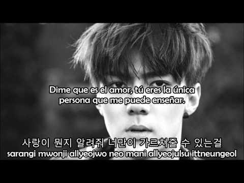 EXO - First Love (Sub español + hangul + roma)