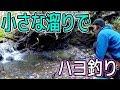 ハヨ(ハヤ)釣りのはずが・・・#2 の動画、YouTube動画。