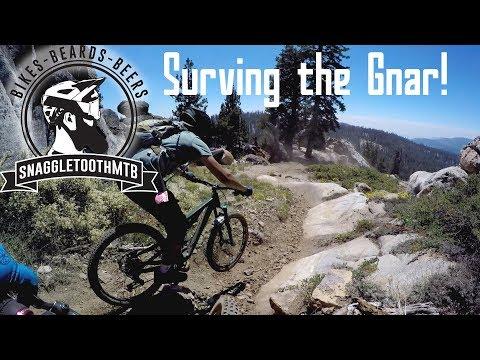 Surving The Gnar! | China Peak Mountain Resort | Mountain Biking In Lakeshore CA