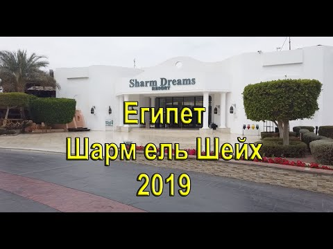SHARM DREAMS RESORT - Египет Наама Бей (обзор 2019)