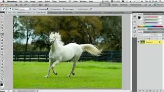 Видеоуроки Adobe Photoshop CS5 - 5 лучших фишек Photoshop CS5