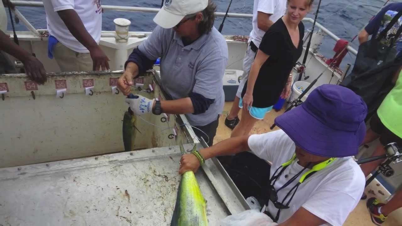 Deep sea fishing on the carolina princess youtube for Deep sea fishing morehead city nc