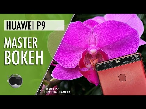 Huawei P9 Special Edition Quick Review Indonesia: Master Bokeh