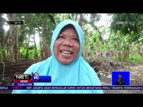 Gempa Bekekuatan 5 7 SR Mengguncang Kota Mataram- NET 12