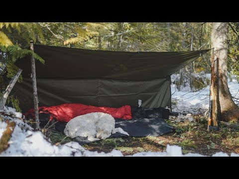 An Early Springtime Overnighter - Bushcraft & Camping in the Canadian Wilderness