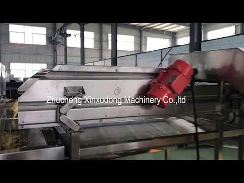 Frozen french fries production line / mesin produksi kentang beku