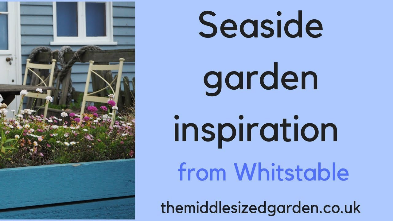How To Create A Delightful Seaside Garden The Middle Sized Garden Gardening Blog