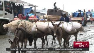 Ethiopia's First Ever Donkey Clinic -  የኢትዮጵያ የመጀመርያው የአህያ ነፃ ሕክምና ክሊኒክ