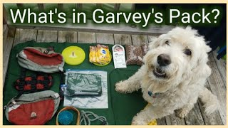 HIKING WITH A DOG- WHAT'S IN GARVEY'S PACK?