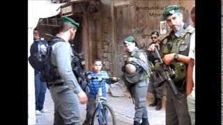 Settler Tour In Hebron
