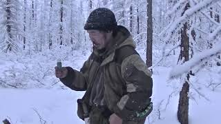 Охота на соболя Красноярский край