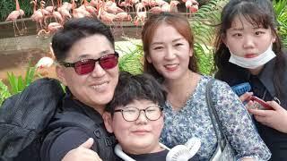 가족여행 싱가폴
